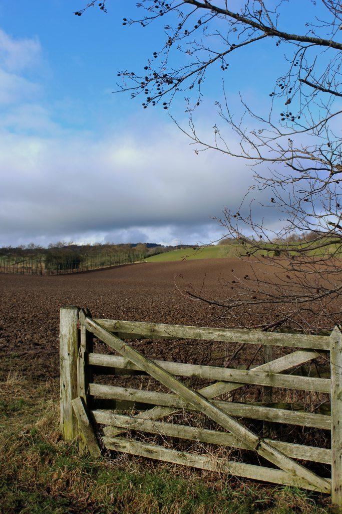 2 - Farmland to the west of Alyth - James Carron, Take a Hike