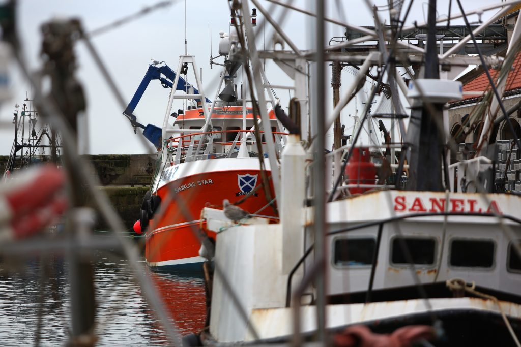 General view of fishing boats in Pittenweem harbour.