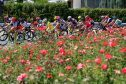 2016 Giro Rosa Stage 8