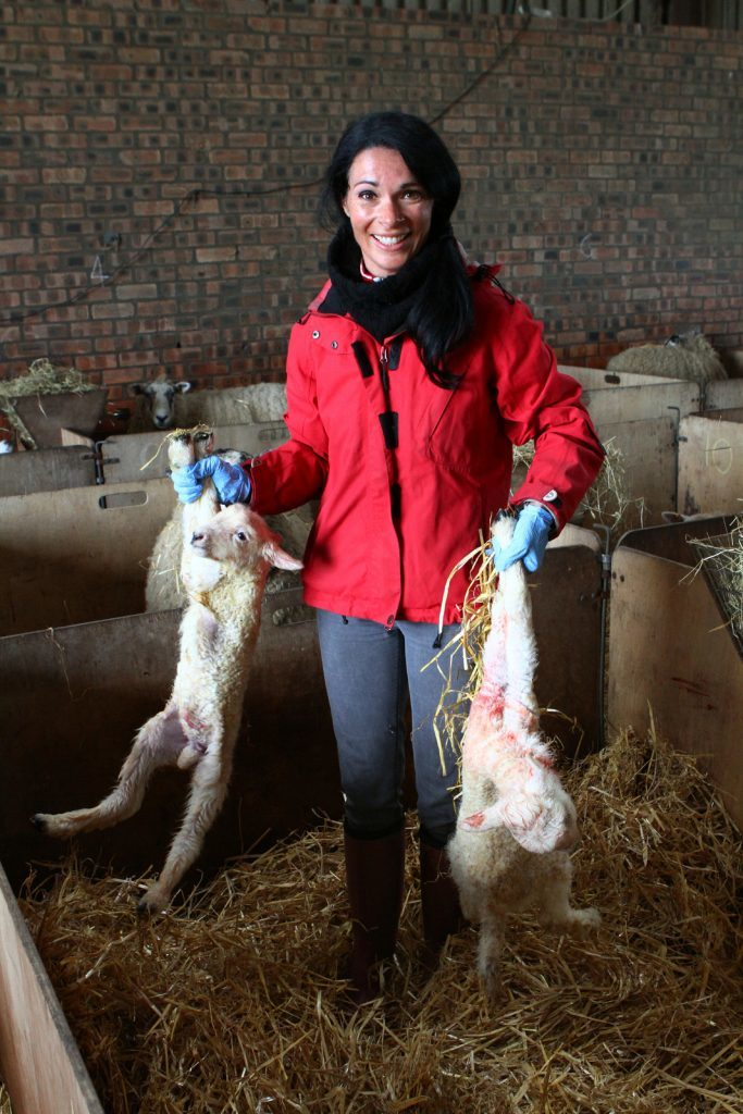 Gayle carries two of the new lambs.