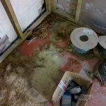 Sewage blocks smooth passage of Carnoustie pavilion plan