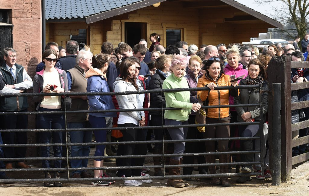 Crowds gather to see Grand National winner One For Arthur.