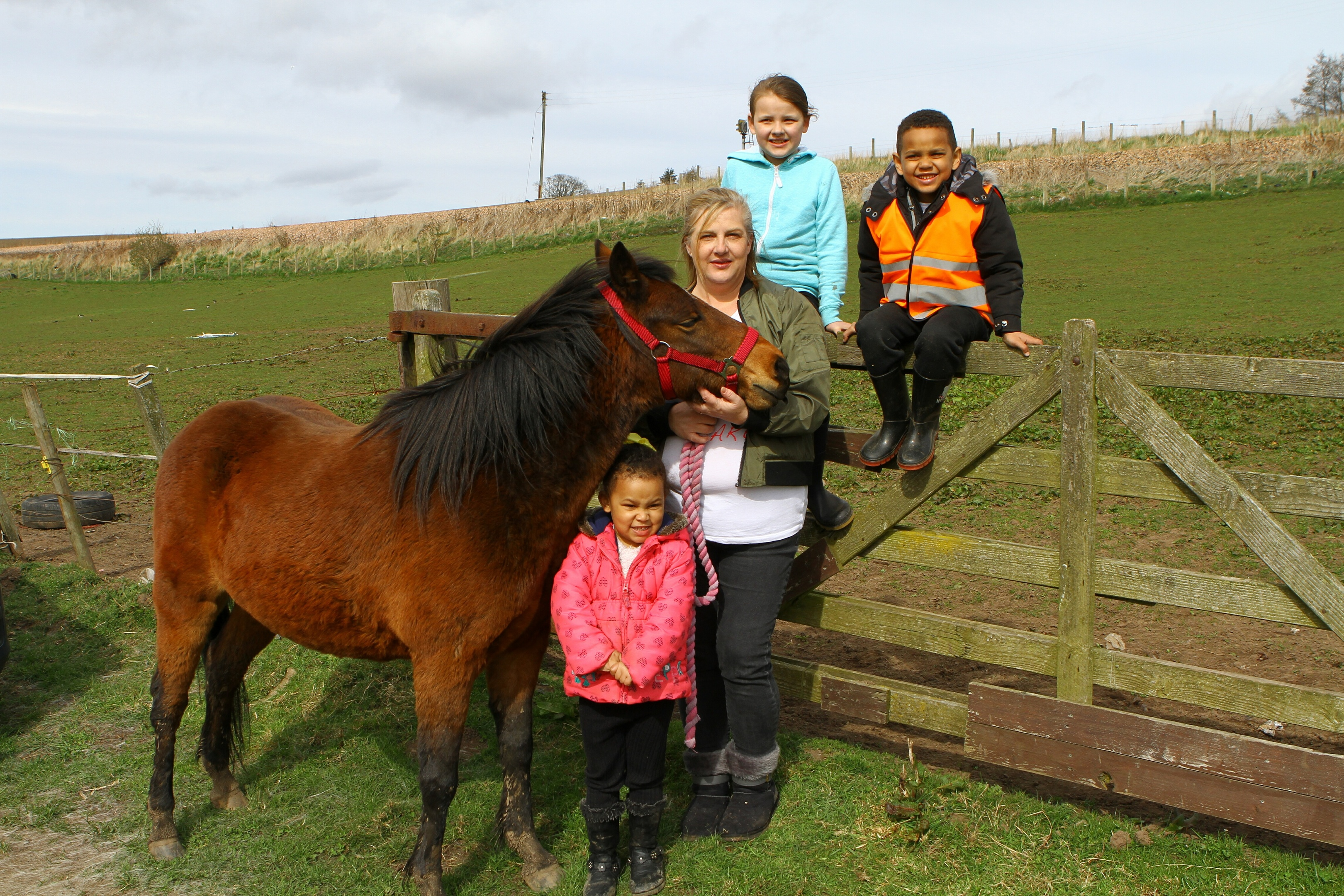 Wendy Robb with one of the horses Orchid, and helpers, Mya-Lynn Koffi (front) and Jasmine Dogan and Curtis Koffi, at the fields near Letham Mill, Arbroath.