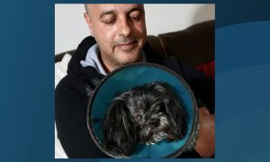 Derek Baxter with his dog Millie who lost an eye after being attacked by another dog.