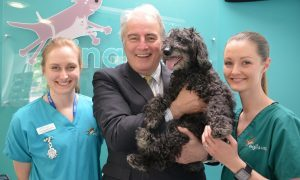 Vet Laura Dugdale,  Ian with his dog Taz and Martha McShane.