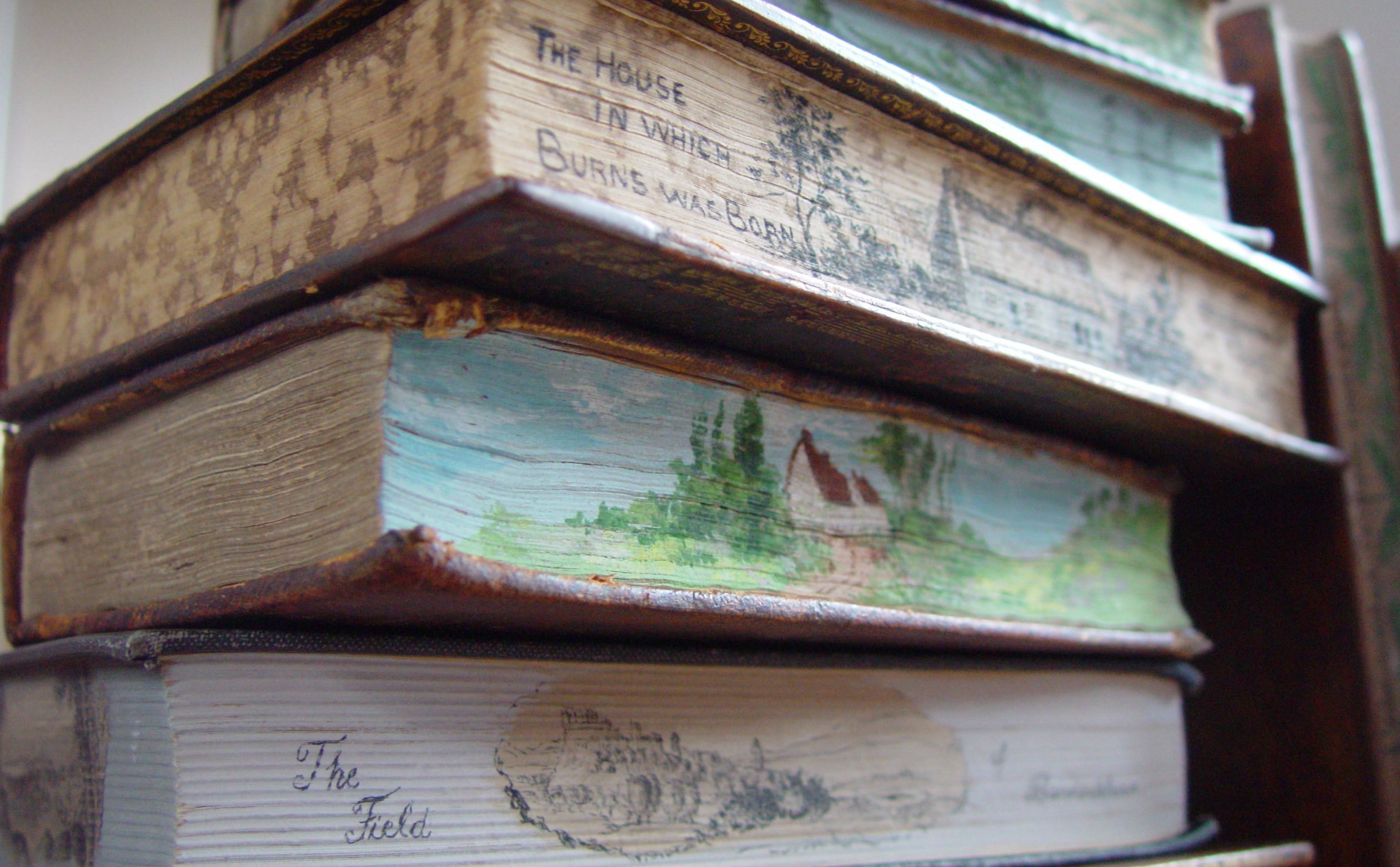 Painted edge pages of a book in the Murison Collection.