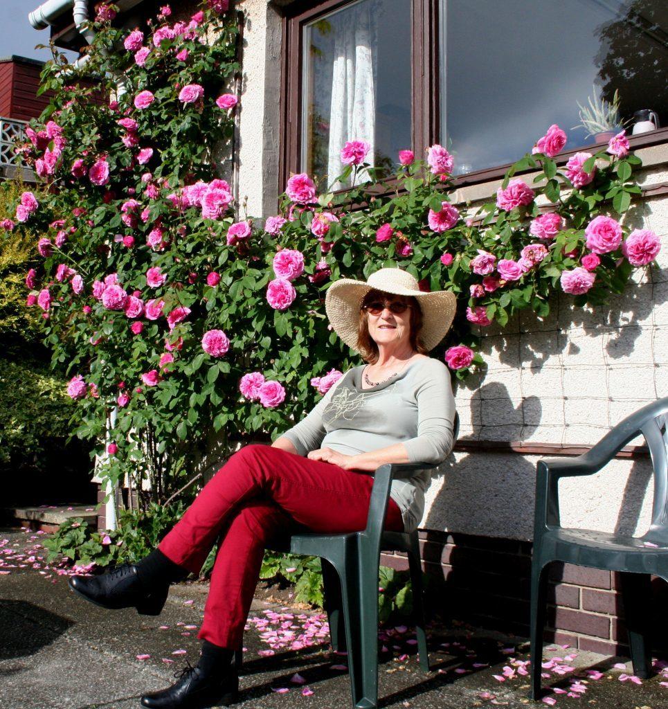 Anna relaxing beside rose Gertrude Jekyll