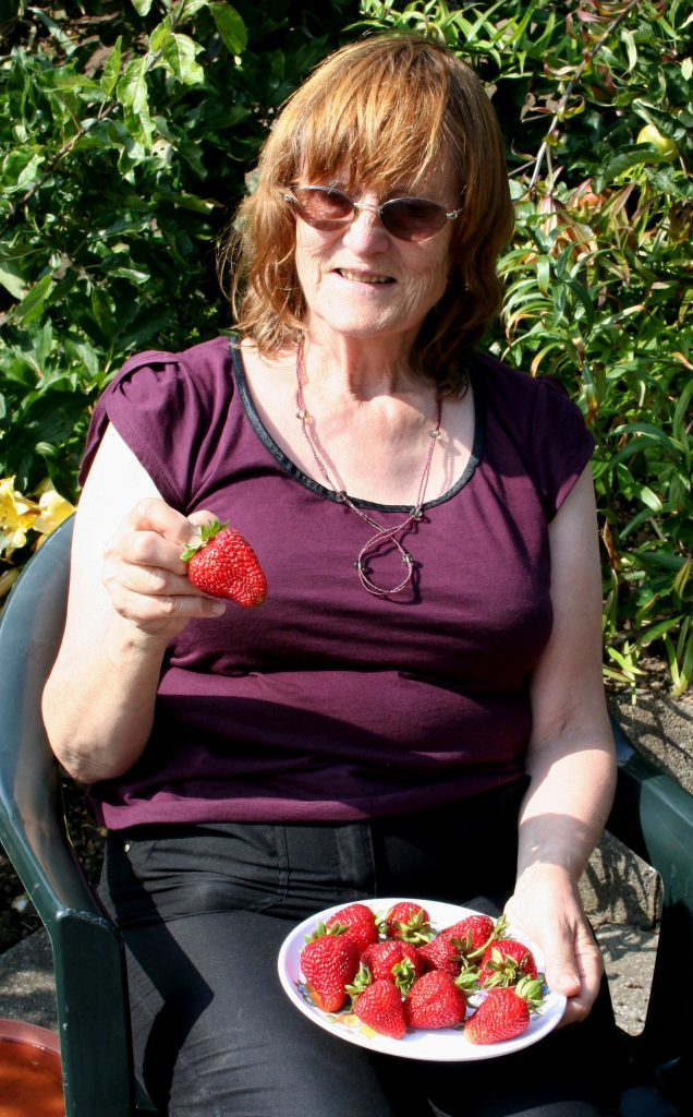 Anna sampling the early strawberries