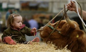 VIDEO: Tour this year's Royal Highland Show in under ten minutes