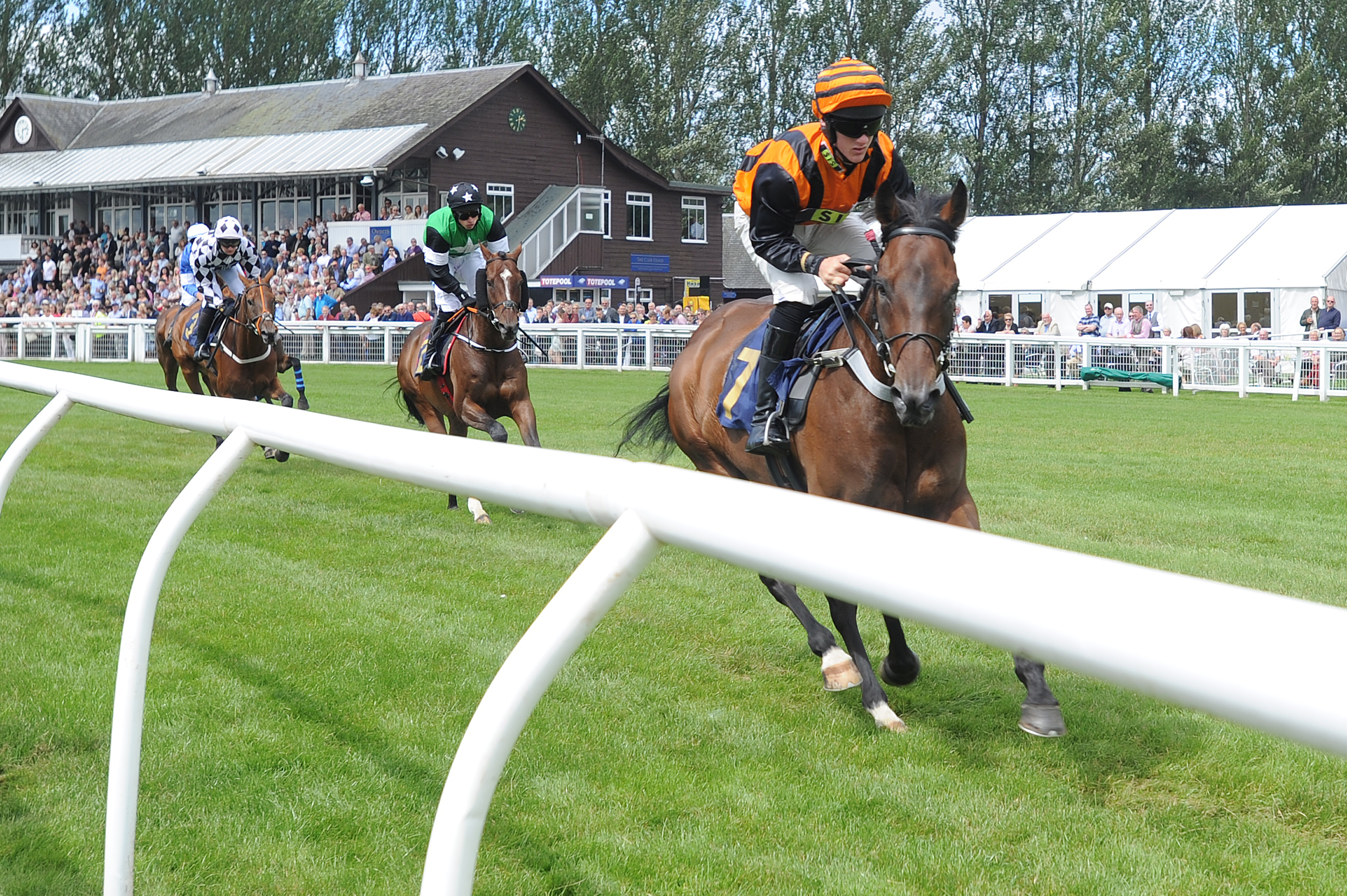 Action from the second race at the Perth Racecourse Family Day,