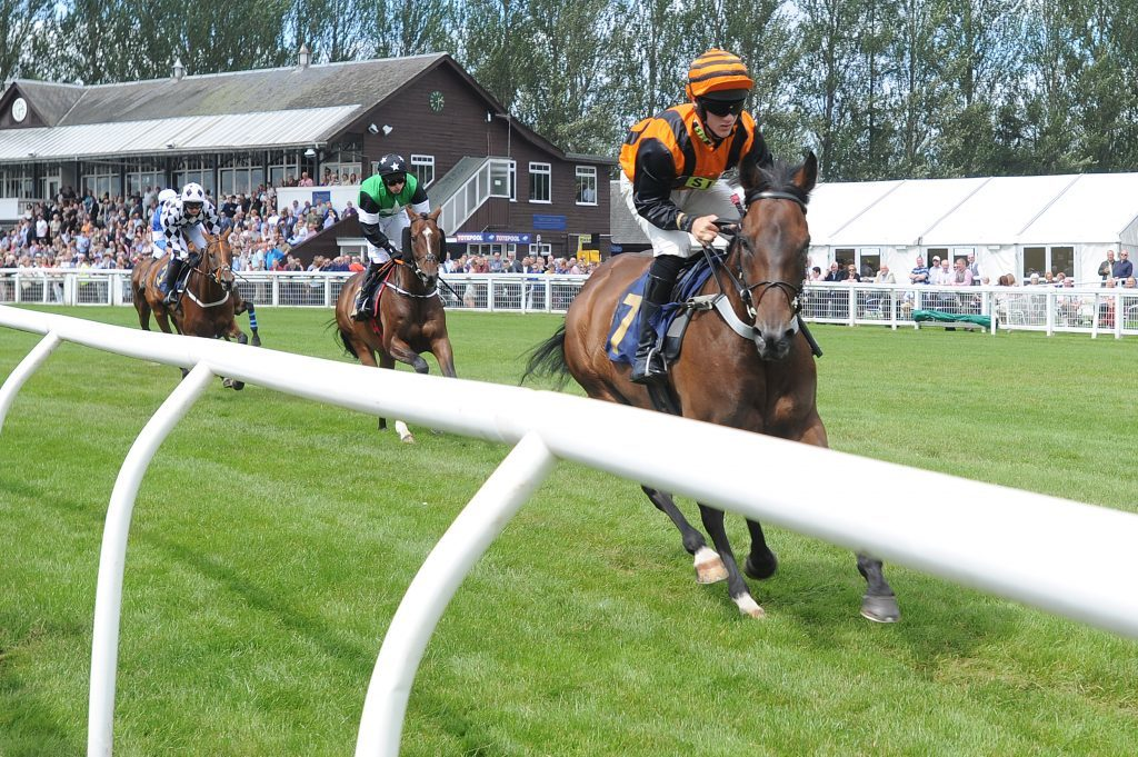 Action from the second race, Perth Races Family Day, Scone.