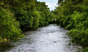 £150K plan to fight River Almond erosion