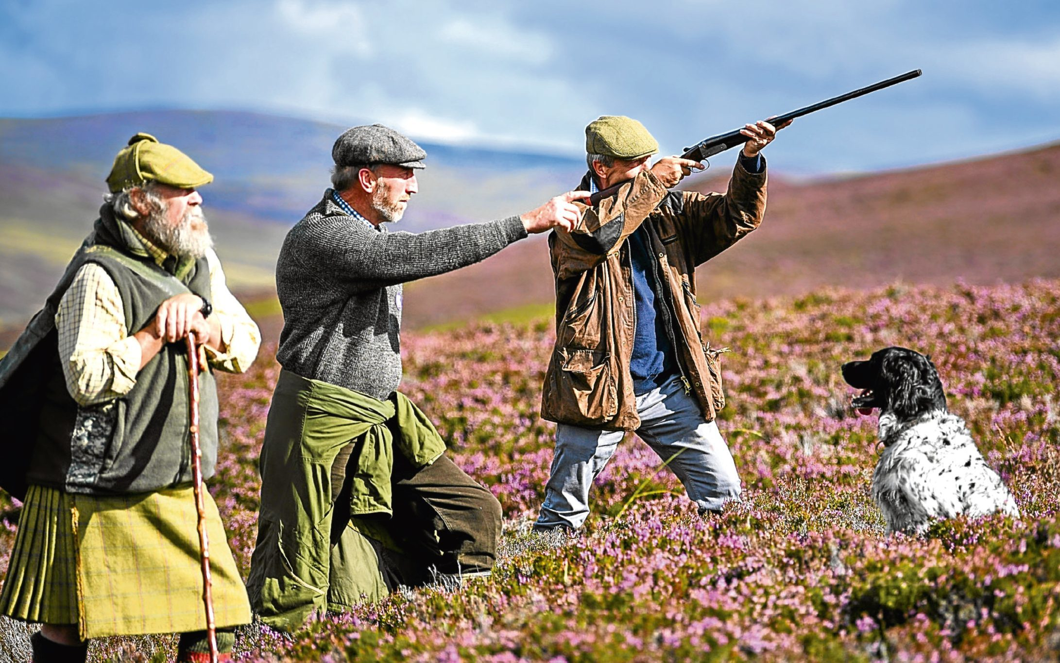 Labour calls for review of grouse shooting on eve of 'glorious 12th'