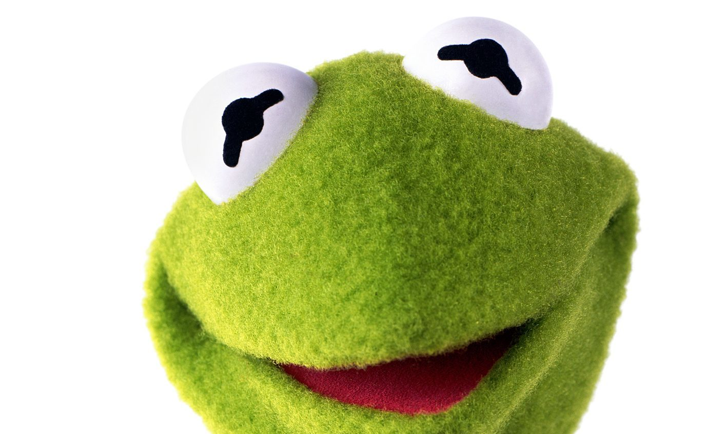 The lighthearted campaign argues that Kermit should be immortalised in Dundee