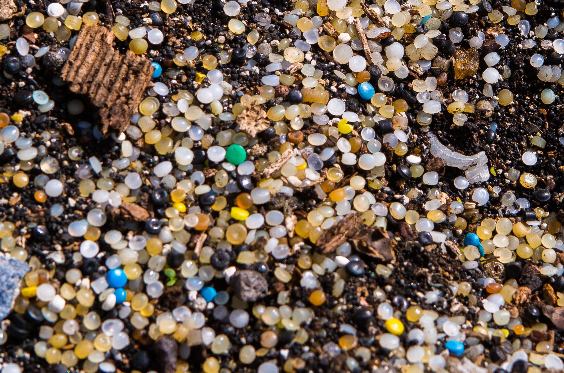Thousands of plastic nurdles washed up on the shore in North Queensferry,