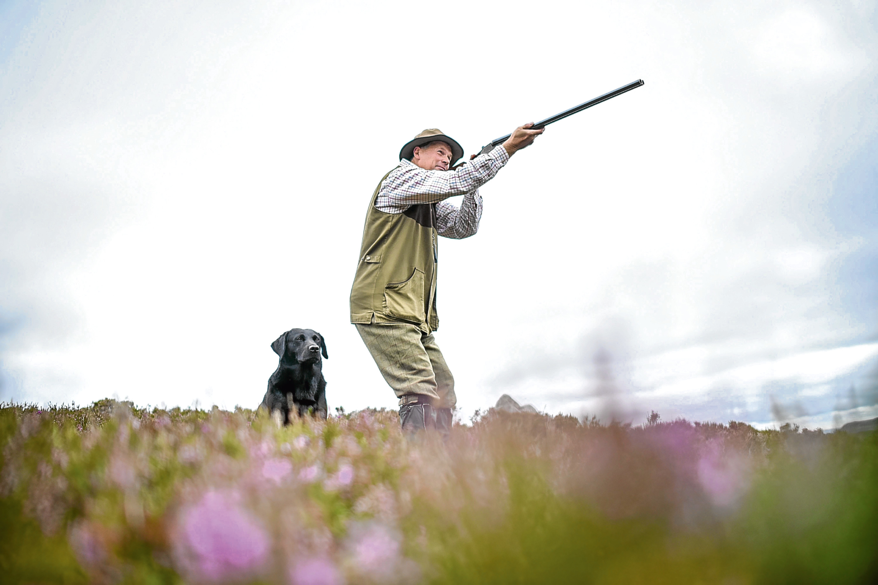 A Glorious 12th grouse shoot near Glenclova.