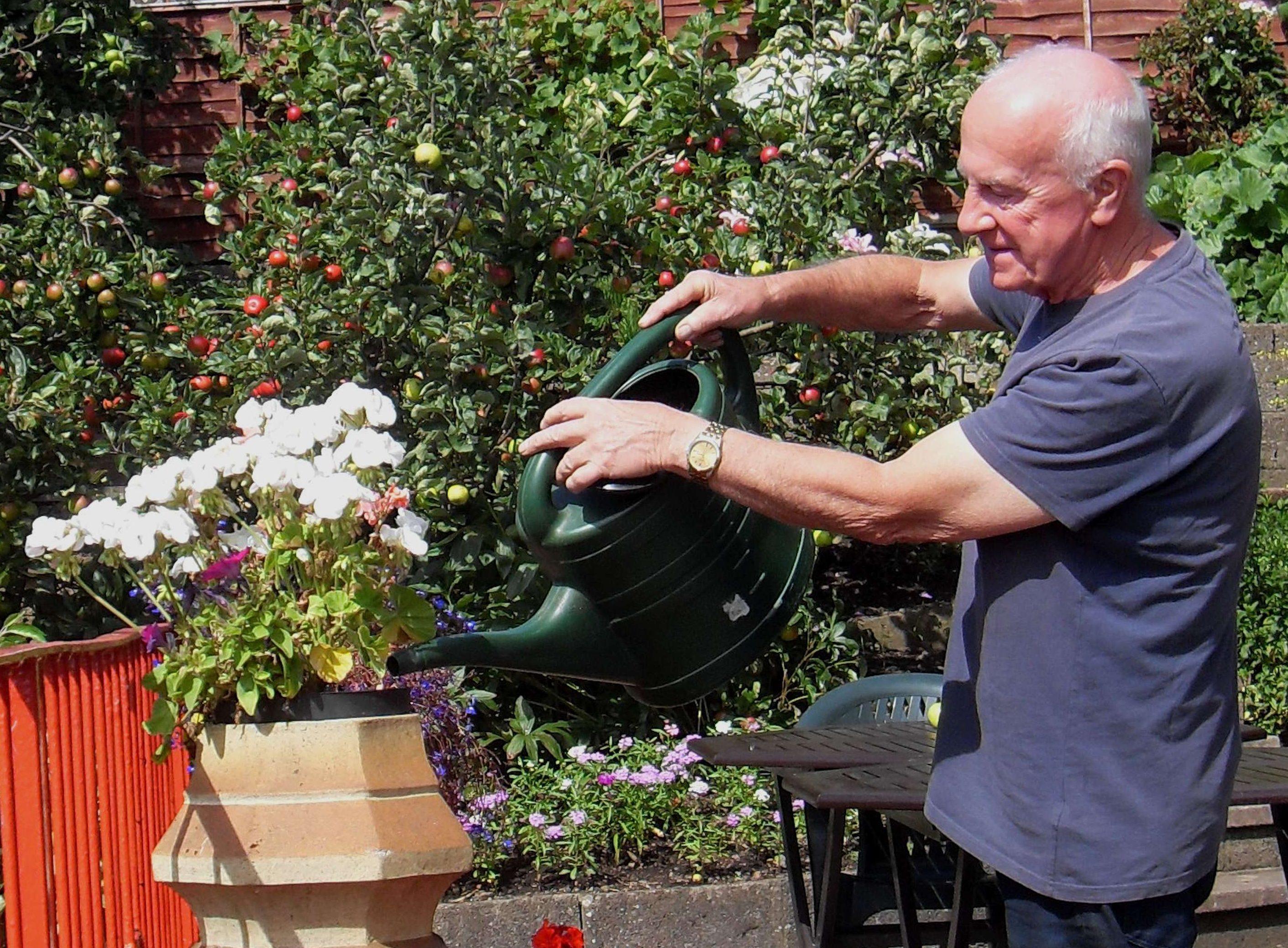 Feeding flower tubs