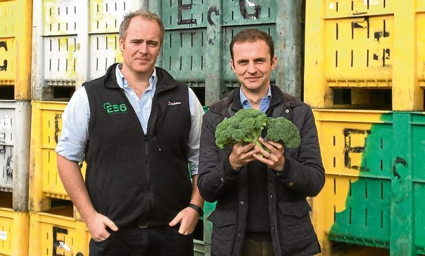 Stephen Gethins and Andrew Faichney of East of Scotland Growers.