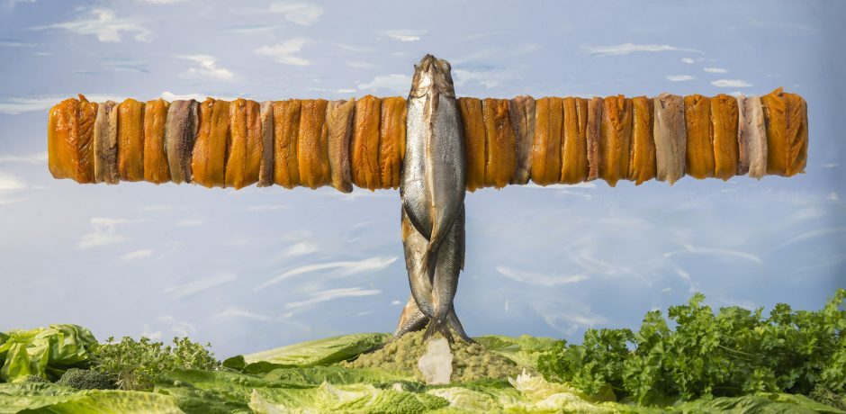 Something Fishy Going On Queensferry Crossing Recreated