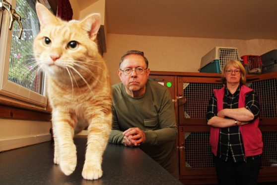 Flatfield Cattery owners Paul and Liz Eddy with Candy.
