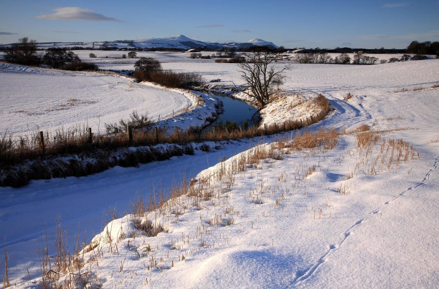 How of Fife, January 2010.
