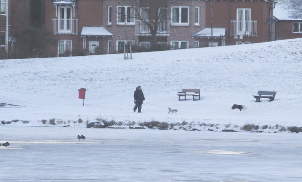 A snowy day in Arbroath but many of the county's schools remain open.