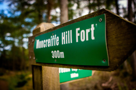 Moncreiffe Hill and its woods offer stunning views and fantastic walks but have been blighted by out-of-control dogs and irresponsible owners.