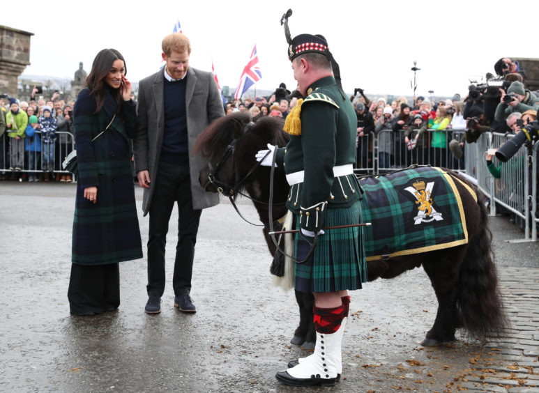 Prince Harry and Meghan Markle meet Pony Major Mark Wilkinson and regimental mascot Cruachan IV