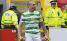 Scott Brown in defiant mood at Pittodrie.