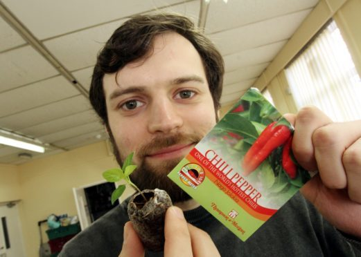 Isa with one of his newly planted ghost peppers