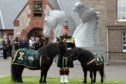 Pony Major Mark Wilkinson with Cruachan IV and Cruachan III  at the Black Watch museum, Perth.