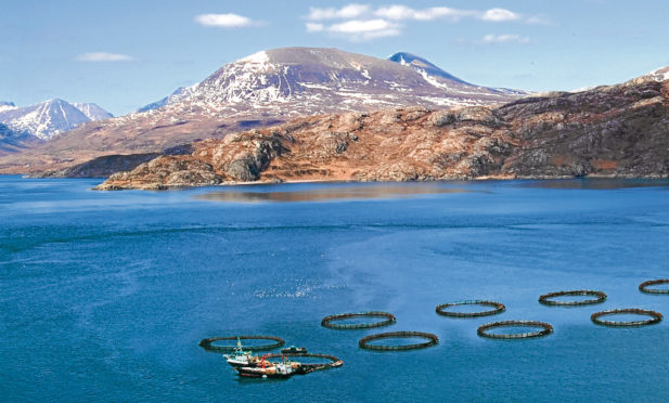 Ace Aquatec's systems are deployed at more than 200 fish farming sites