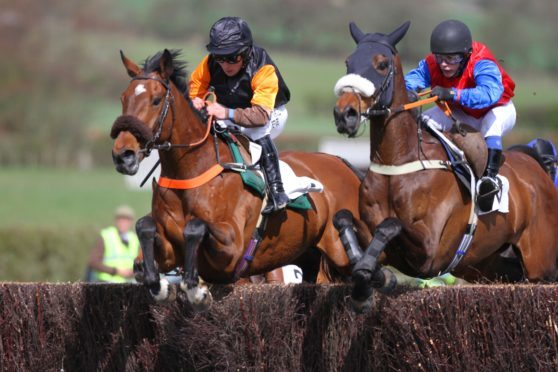 Afterclass and Left Back in action at Fife Point-to-Point