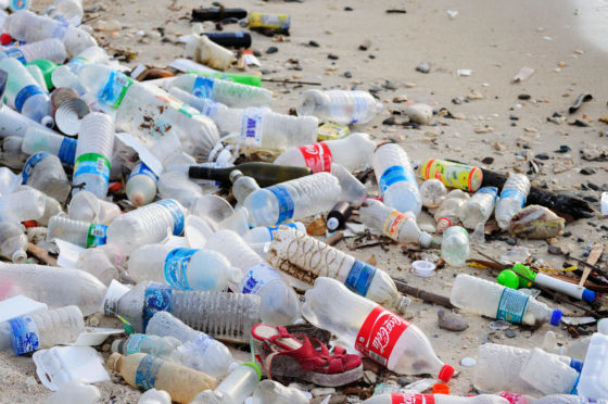 The depressing result of our carefree attitude towards plastic.