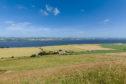 Logie Farm near Newburgh in Fife has 327 arable acres, a four-bedroom farmhouse and steadings.