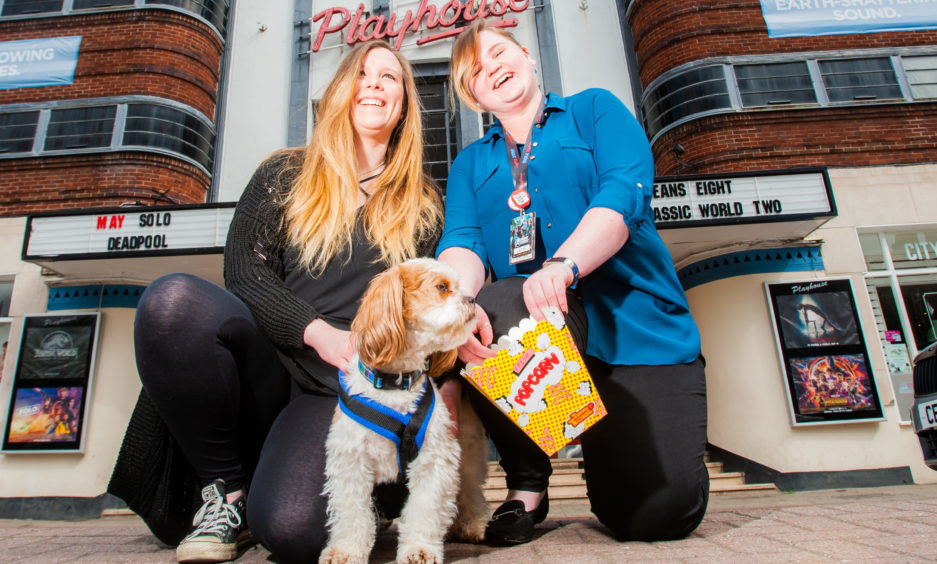 Dog Food Shop Dundee