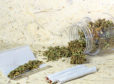 William Hague has sparked a new debate on the decriminalisation of cannabis.