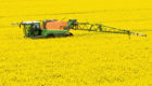 A correspondent is concerned that farmers are killing off insects with their use of pesticides.