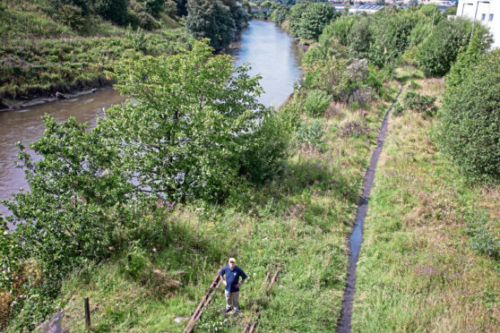 The overgrown railway lines at Leven.