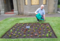 Sandy Ogilvie tending the plants in the Boyle Park.
