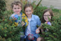 Max Park (4), Olly Learmonth (10), and  Evie Henderson (9), hiding stones in the Rainbow Park in the Mid Links, Montrose.