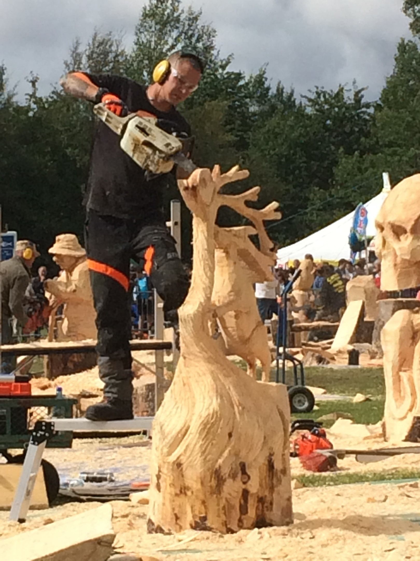 Chainsaw artist: a cut above the rest the courier