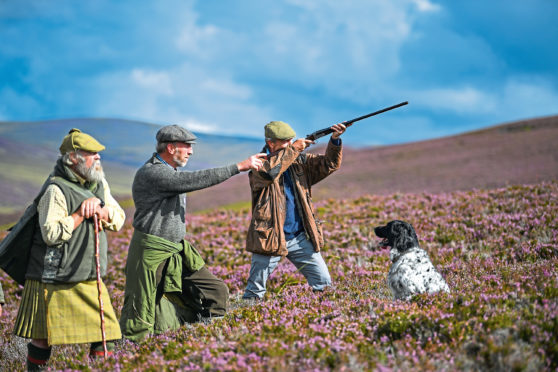 Grouse shooting is thought to be down this year across Scotland