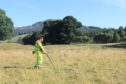 A detectorist at work on the Killiecrankie site