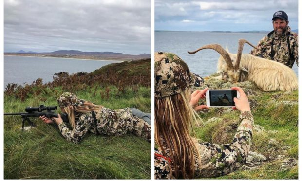 Images of a goat that was hunted on Islay.