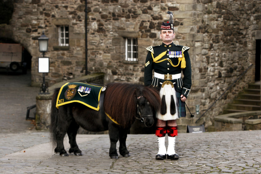"Stirling Castle:           Argylls' Pony Major  William Perrie with "" Cruachan the 111"""
