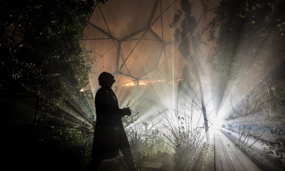 A man looks at the illuminated plants, which form part of the Cornish tourist attraction's Christmas light display, inside the Mediterranean Biome at the Eden Project. Matt Cardy/Getty Images