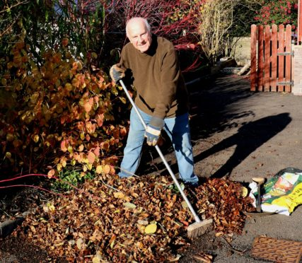 John gathers up the leaves