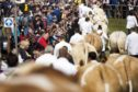 Royal Highland Show members are concerned about the departure of many experienced staff.
