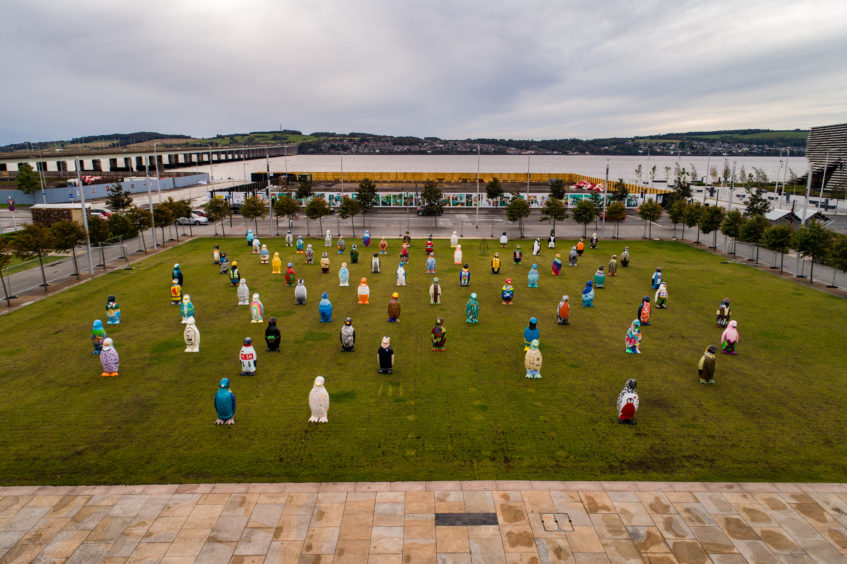 The penguins all together one last time at Slessor Gardens. Courtesy Rising View Ltd